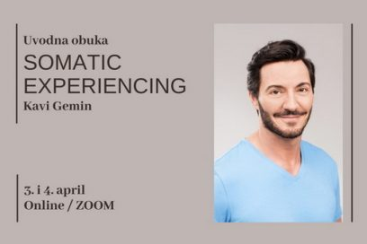SOMATIC EXPERIENCING – Introductory training with KAVI GEMIN