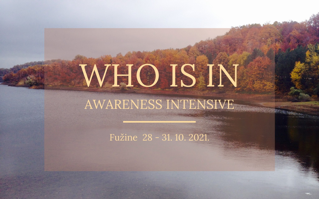 WHO IS IN – Awareness intensive