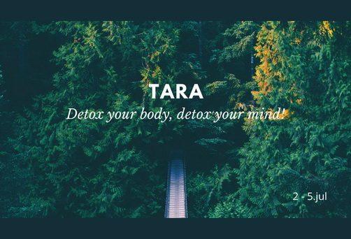 Detox  your body, detox your mind